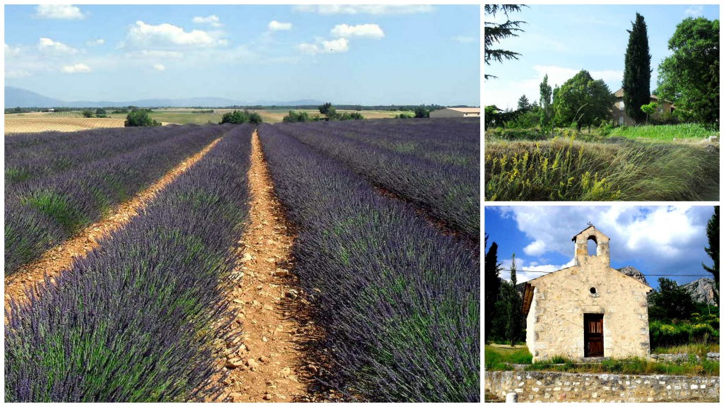 Provence..